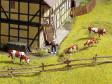 N - Dřevěný plot pro dobytek