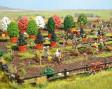 H0 - Rostliny v zahradnictví