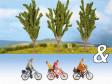 """TT - Dekorační sada """"Cyklisté a topoly"""""""